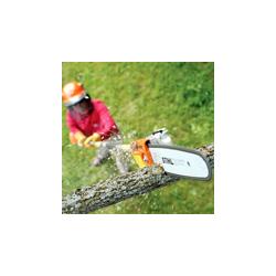 Podadora en Altura Fija o Telescópica
